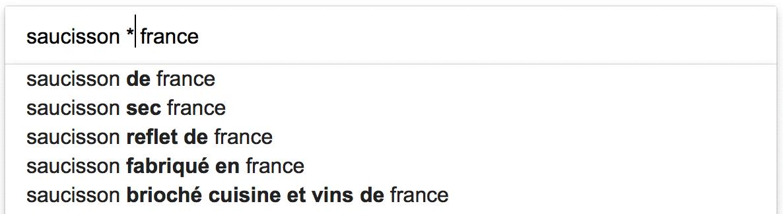 requête google avec l'opérateur de recherche *